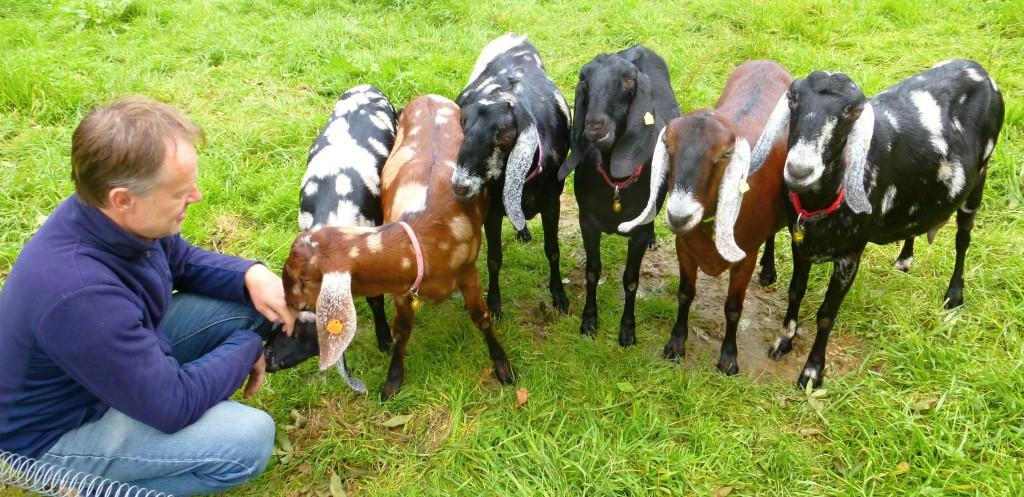 Modletické kozy