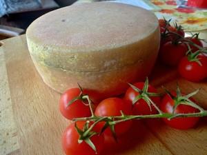 Tvrdý sýr s mazem -stáří jeden měsíc